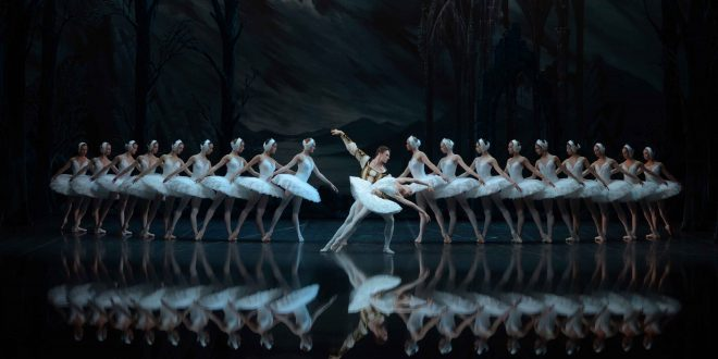 the-st-petersburg-ballet-swan-lake-swans-duo_lr-660x330