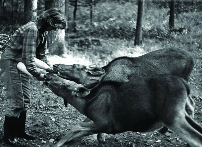 simona-kossak-fot-lech-wilczek-6